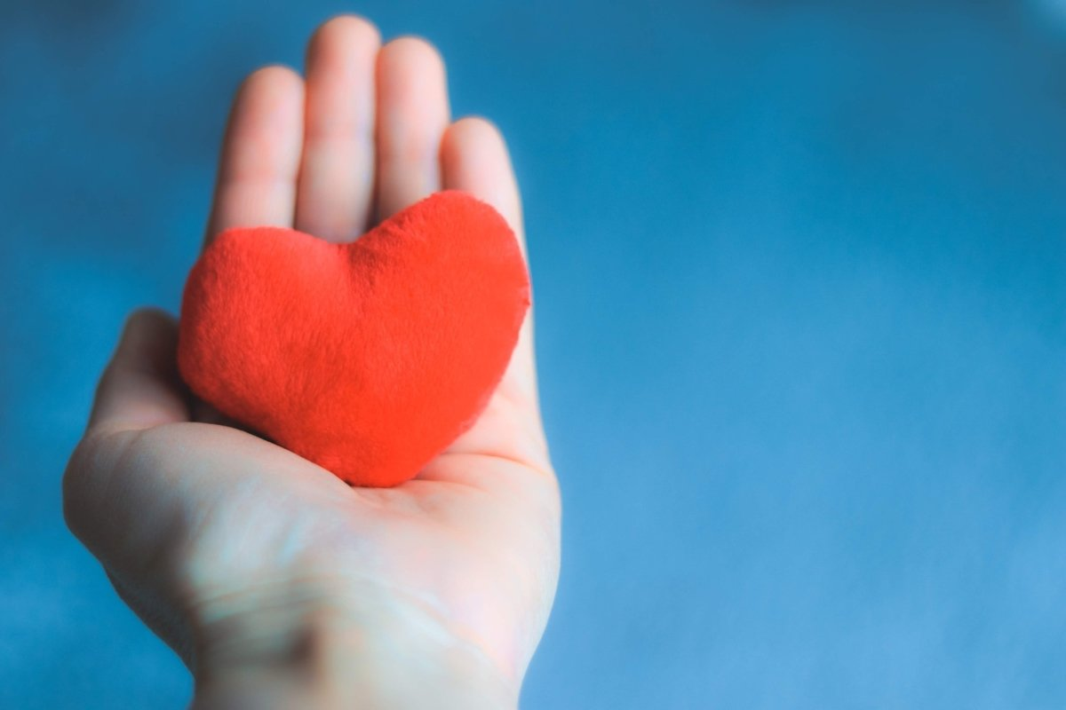 close-up-shot-of-hand-holding-soft-red-heart-on-blue-background-happy-valentine-love-care_t20_983EaO